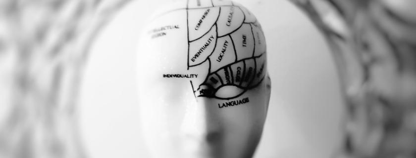 brain flexibility