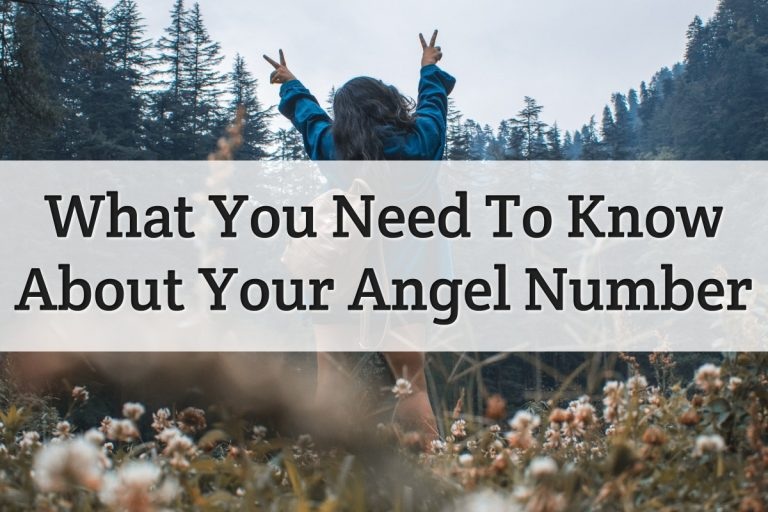 Information about angelic numbers meaning Feature Image